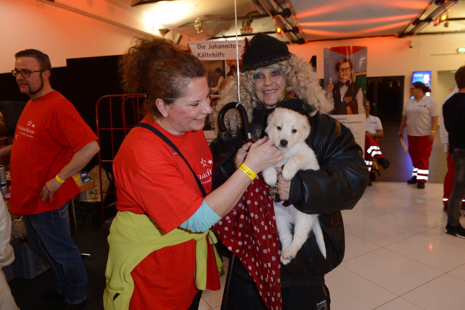 Eine Helferin, ein Gast mit Hund